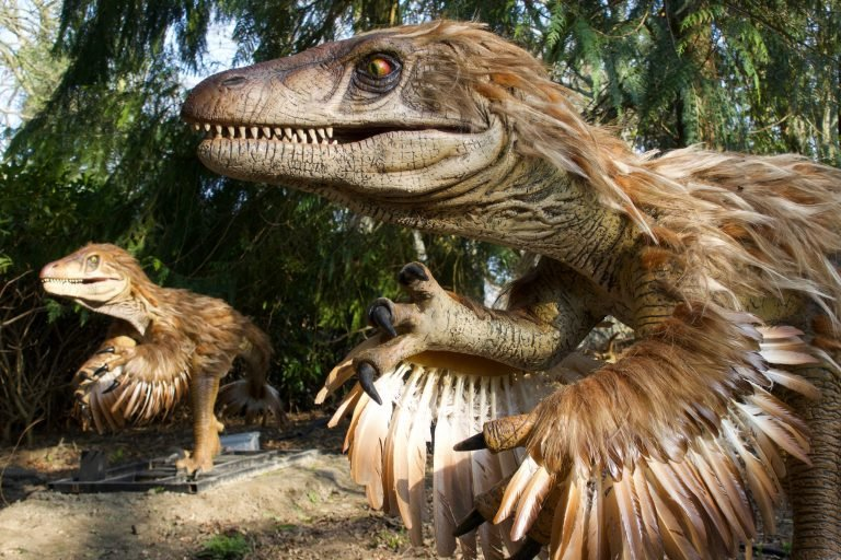 Dinosaur with feathers