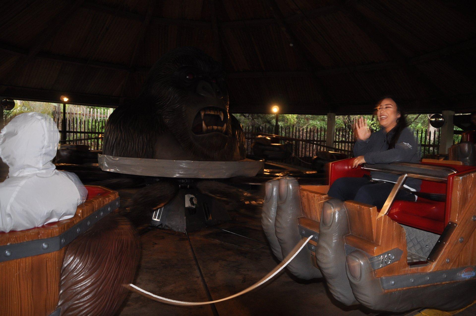 Woman smiling on spinning Gorilla ride.