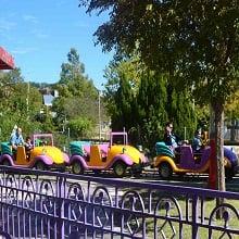Guests riding miniature car roller coaster.
