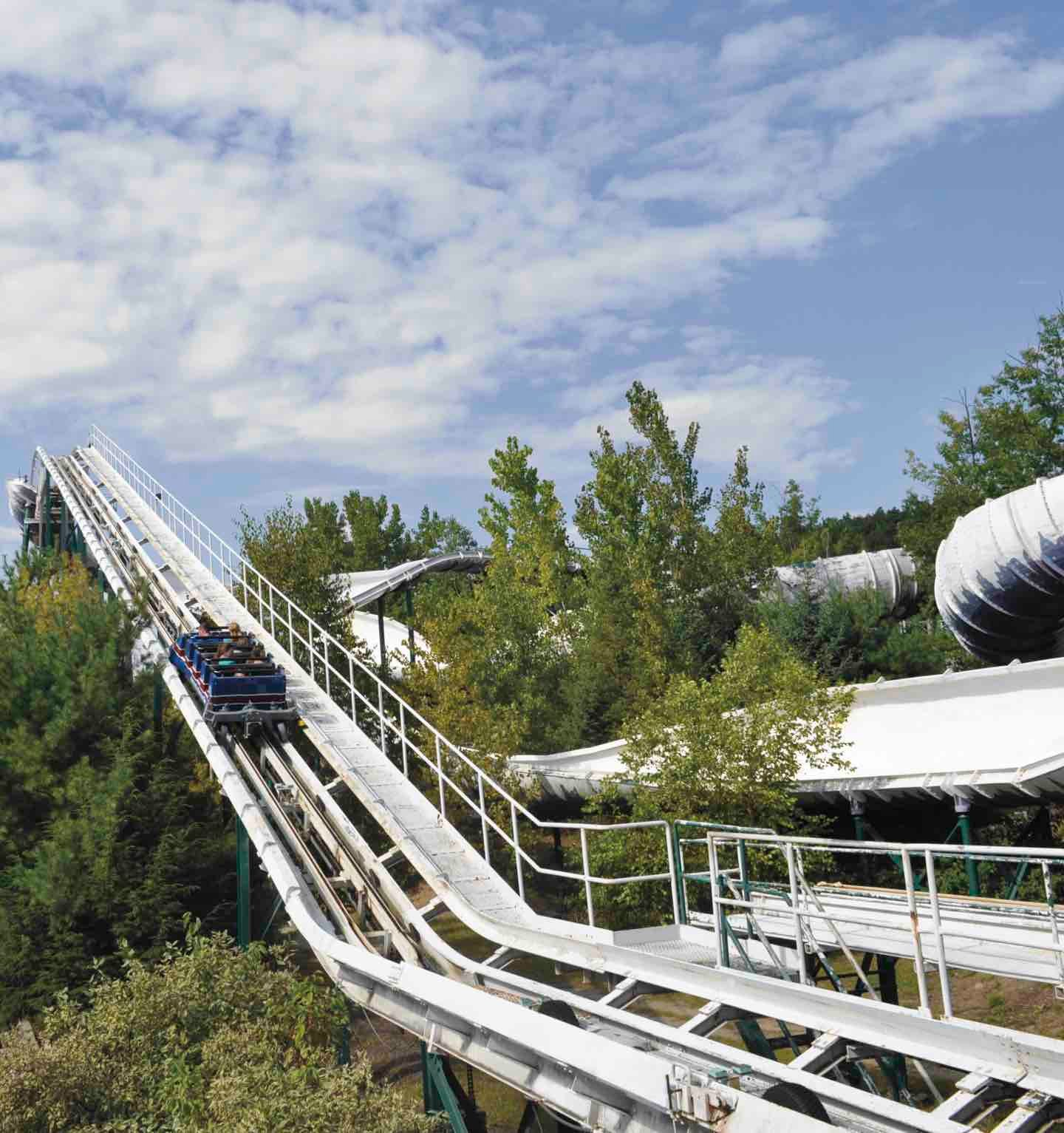 Alpine Bobsled | Great Escape