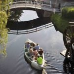 People riding in swan boats.