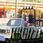 Kids riding mini safari cars.