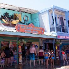 Ice-cream-island-papaya-petes-800-800_0