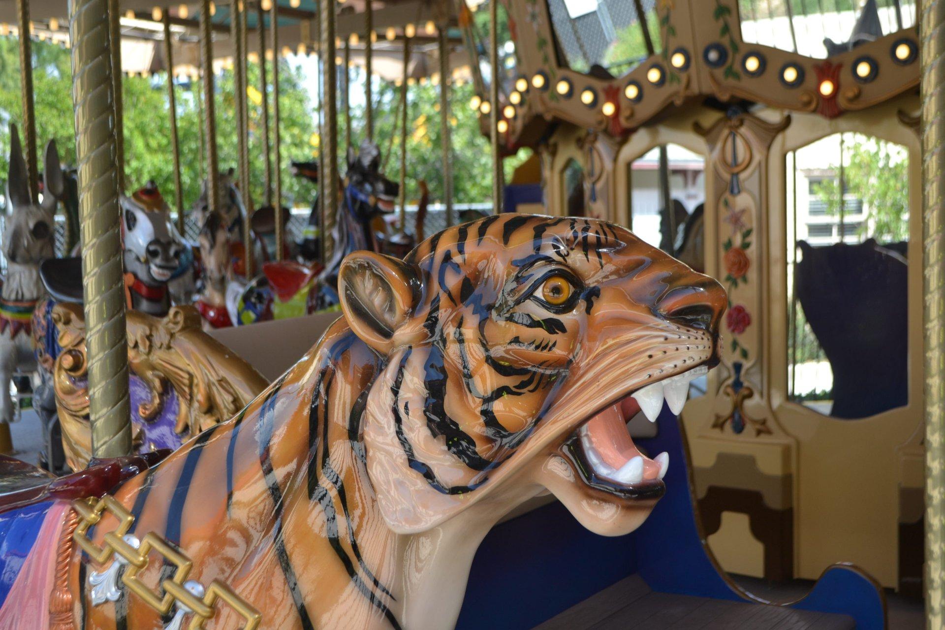 Kids Rides Six Flags Fiesta Texas