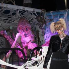 Arachnid-Alley at Six Flags Discovery Kingdom