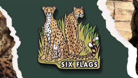 Web-Hero-Image-Template-Large-Pixel-Cheetah-Member-Appreciation