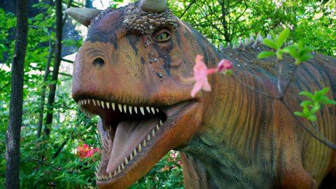 Carnotaurus at Great Adventure