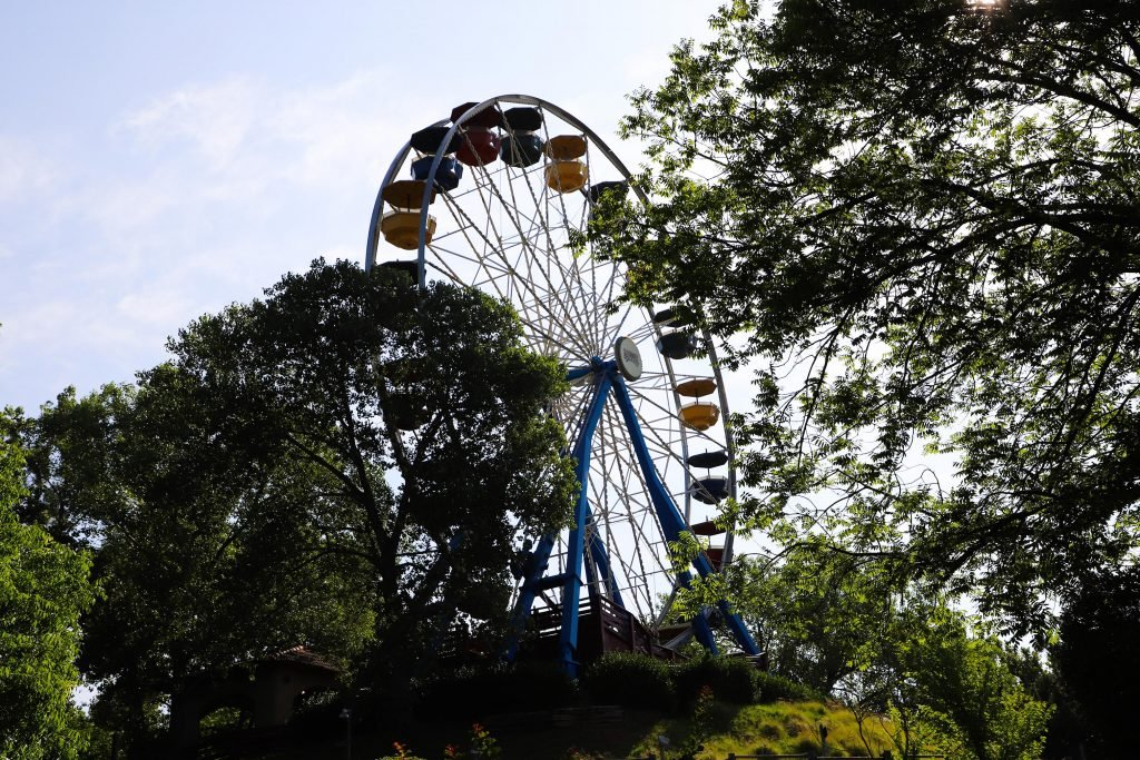 view of a ferris wheel through the trees at frontier city