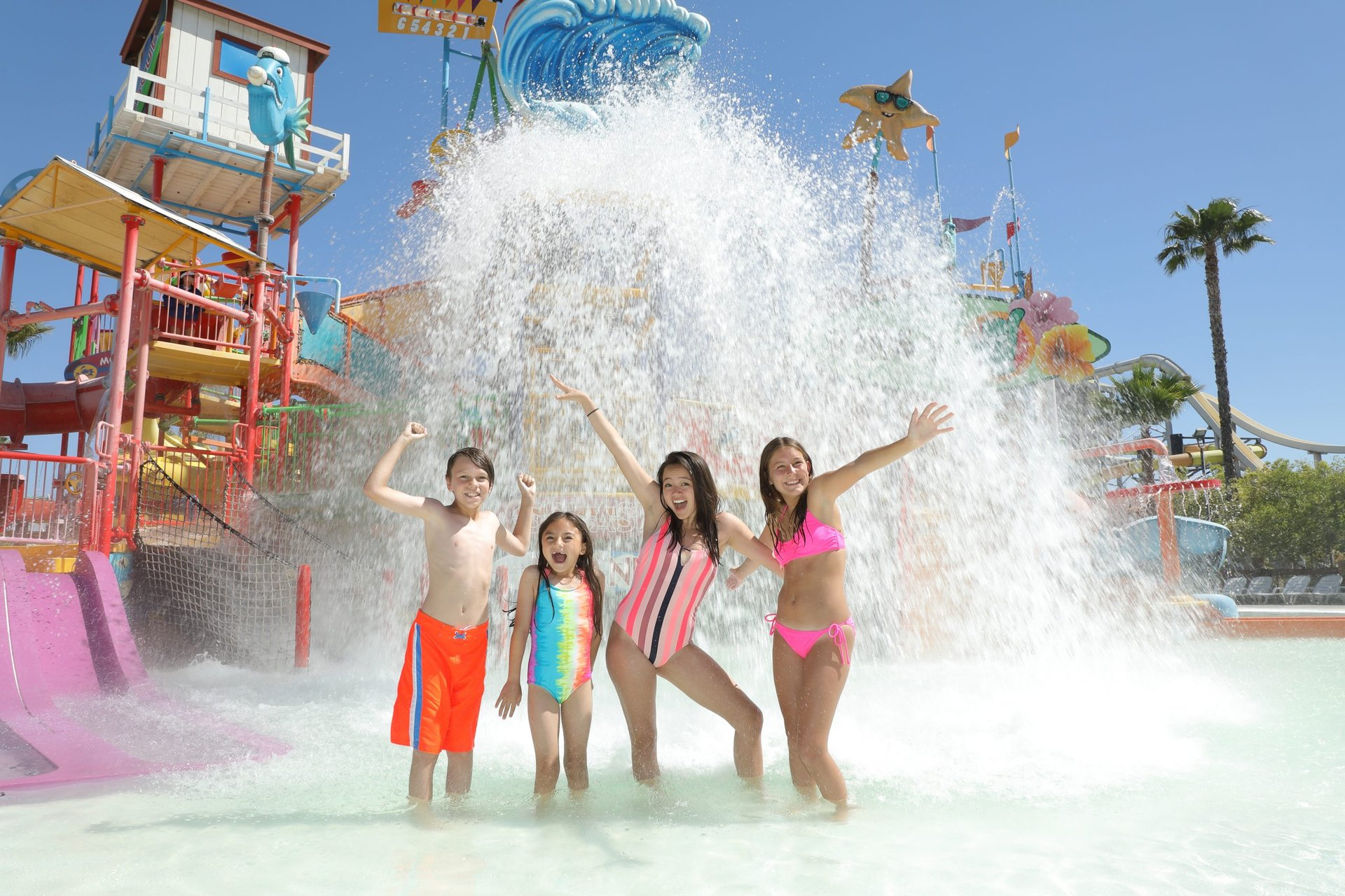 hhla_splash-island-1-1