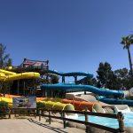 splash down pool for four slides at hurricane harbor