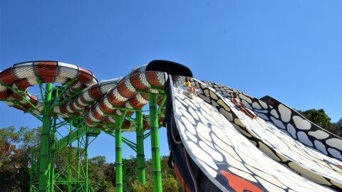 King Cobra at Hurricane Harbor