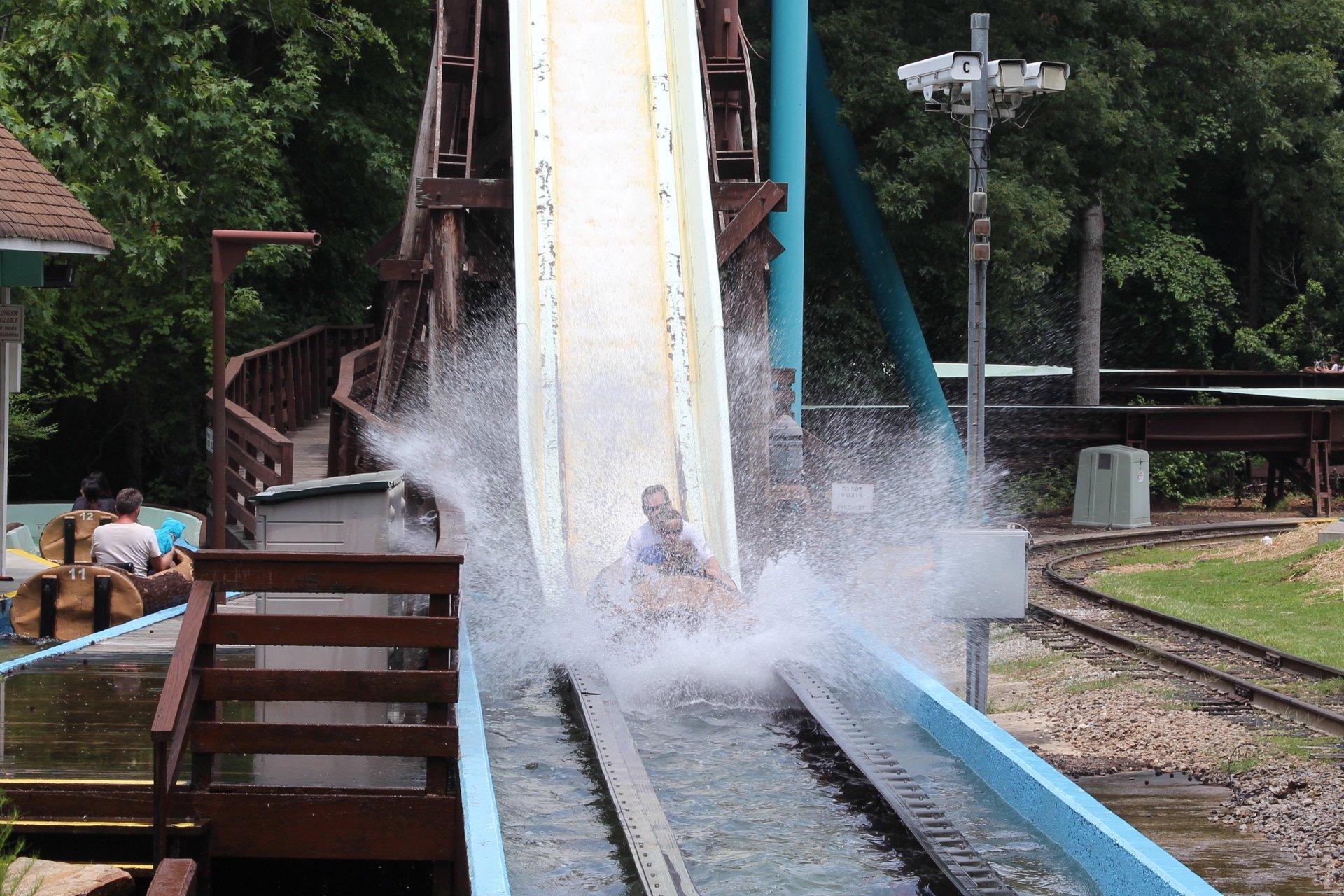 log-jamboree-51 splash