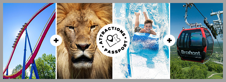 Passeport Attrait ticket banner with a coaster, a lion, a boy on a water slide, and a gondola