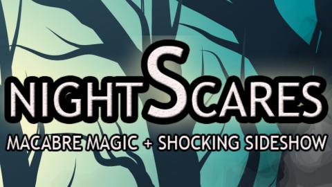 nightScares detail image
