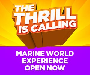 The Thrill is Calling Six Flags Marine World Experience Now Open
