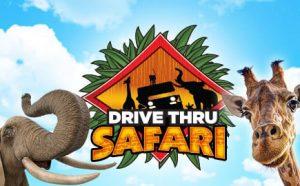 elephant and giraffe safari drive thru logo